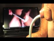 gay male  sounding urethral  d