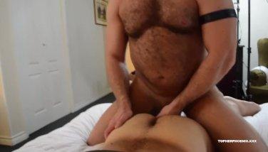 gay gordos osos