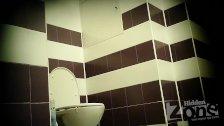 hidden toilet 1870