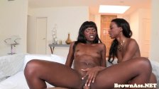 Bootyful black babes fucking the same cock