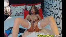 Beautiful Brunette Tranny in a Hot Masturbation Show