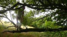 377 redbube mann klettert nackt auf Baum Wald Arsch Penis 7c8a1 men climber