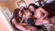 Best Ebony Pornstars all cumming together