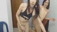 Slutty Tranny Hungers For a Big Hard Cock