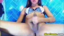 Big Dick Asian Shemale Webcam Tube