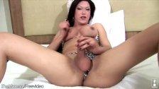 Brunette shegirl enjoys pumping her shecock