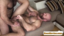 Bearded chubby bear fucking mature guys ass