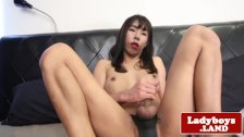 Masturbating ladyboy tugging in solo session