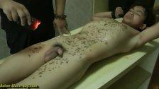 Asian Straight Guys Hot Wax