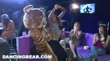 DANCING BEAR - Starting The Party Right With Big Dicks Swinging In Bitches'