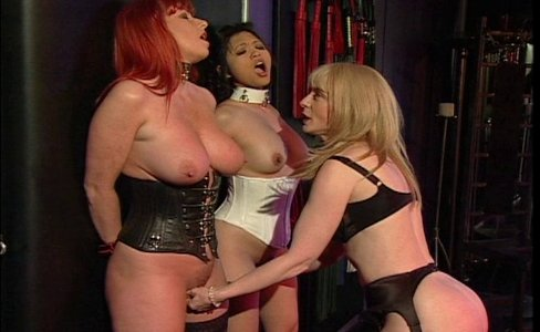 Slave training started|380,783 views
