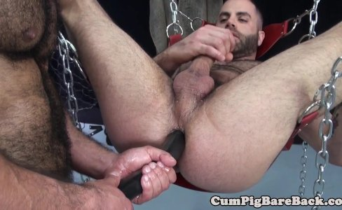Dilf bear cocksucked in bareback threesome|15,005 views