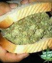 smokemarijuana
