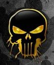 PUNISHER_2013