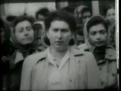 Vintage Jewish Porn
