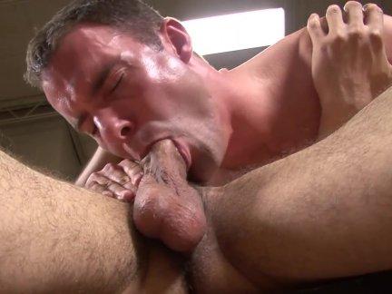 nice gay blowjob