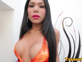 Busty ladyboy models bikini spasmodically wanks