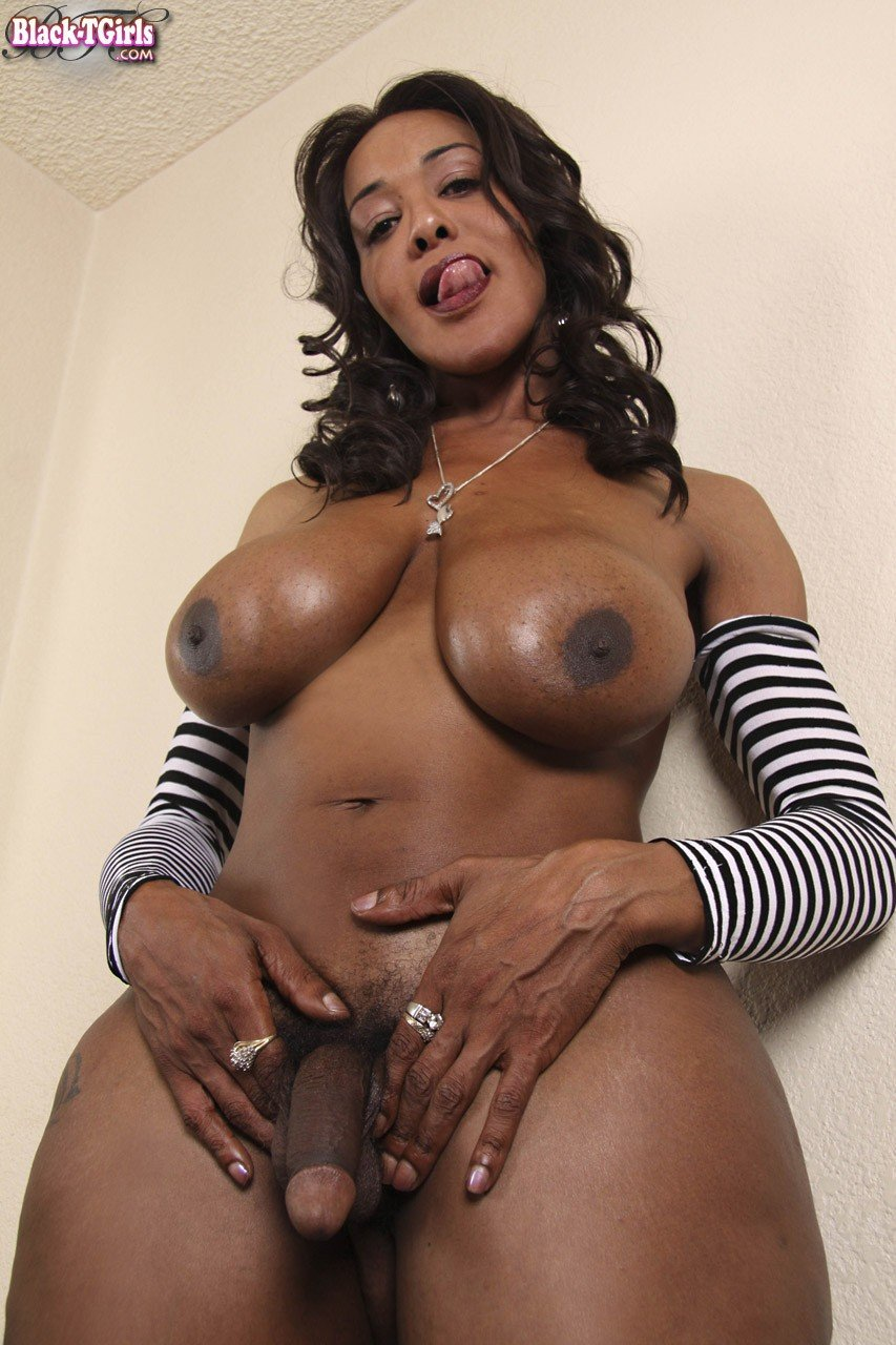 Cute Males Transsexual video